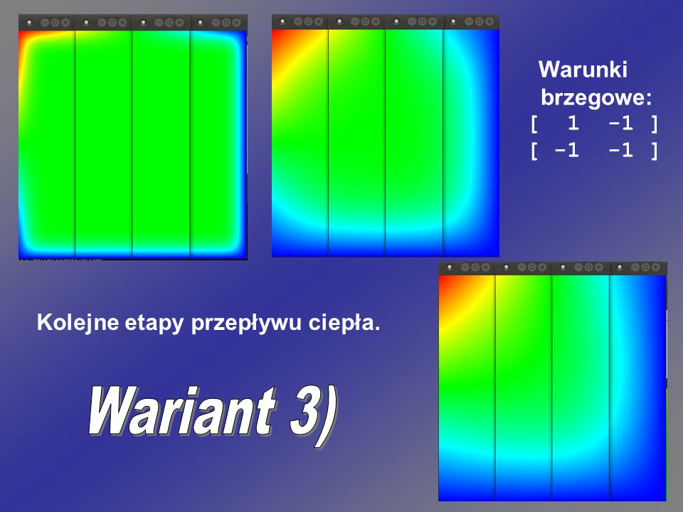 Wariant 3) Warunki brzegowe: [ 1 -1 ] [ -1 -1 ]